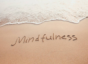 Mindfulness Matters NOW: Twins Terrific: Dharma & Karma