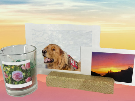 Liv's Essential Finds