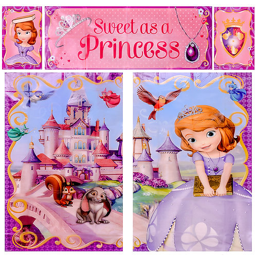 Sofia the First Wall Decoration