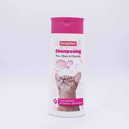 Shampoing doux pour chatons