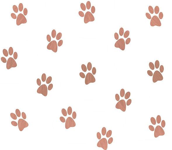 patte de chien fond rouge