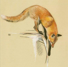 Egon Schiele Style Red Fox Pastel Drawing