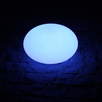 LED Oval Light