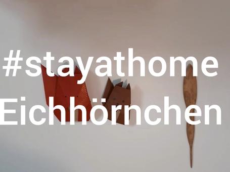 #stayathome Eichhörnchen TEIL 1