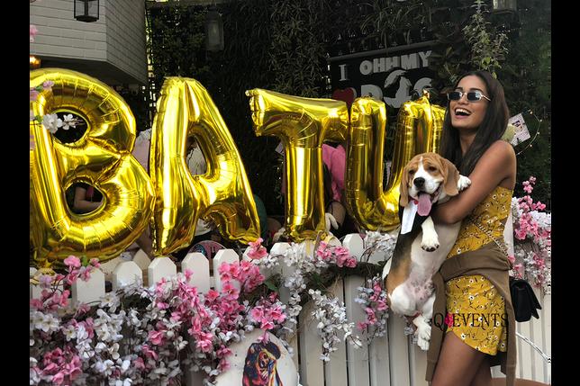 Batuk Nath Rai's (Beagel) Birthday