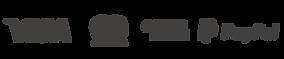 Logos-01 Gris.png