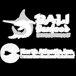 Logo_Bali-NorthAtlantic.png