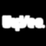 Logo_HyVee.png