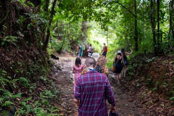 rainforest_excursion_21.jpg