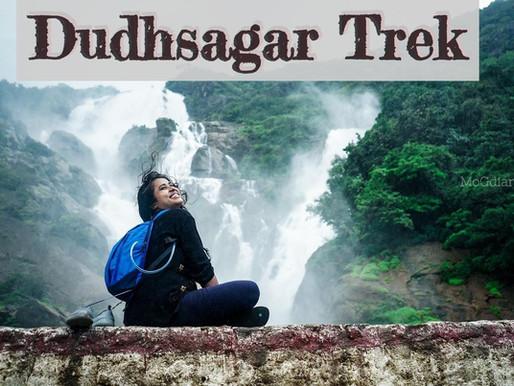Dudhsagar Waterfall | Every traveler must know this before trekking | 2020 trekking to Dudhsagar