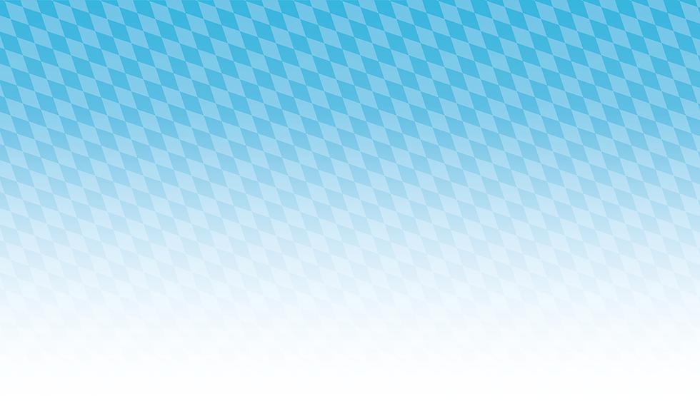 Hintergrund-Raute-kursiv_hell_klein.png