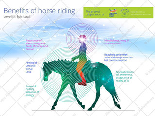 Meeting NDIS goals with Therapeutic Horse riding