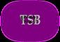 TSB Logo4.png