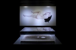 個展「Another side of beauty / 美の一つの側面」 Installation view