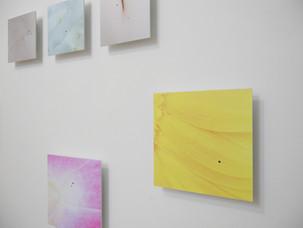 個展「Beauty 」 Installation view