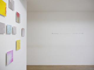 2012年2月6日~2月18日    個展「Beauty 」  大阪 ギャラリーwks  Installation view