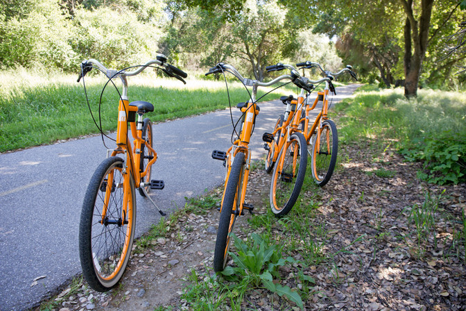 Bikes11.jpg