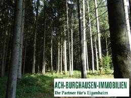 ---Leider Verkauft---Waldgrundstück
