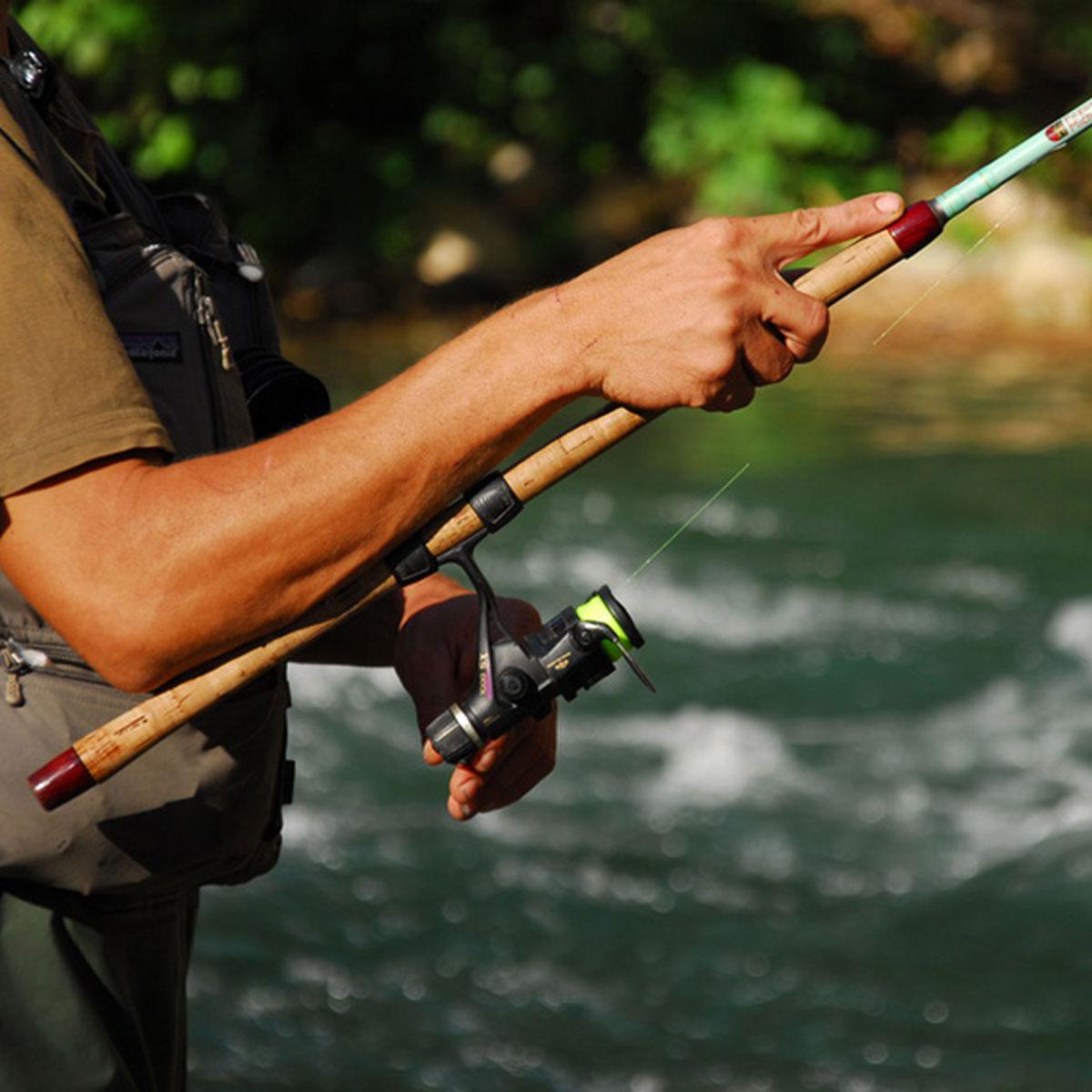 Le royaume de pêcheurs