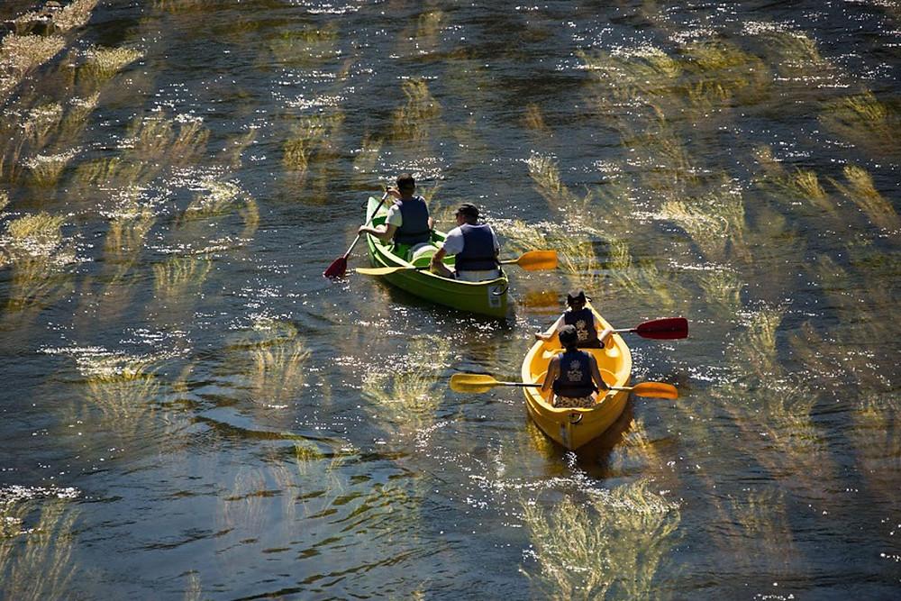 La rivière de la Dordogne