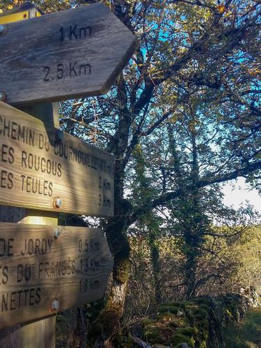 Les nombreux chemins de randonnée autour des gîtes