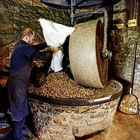 Visitez les moulins à huile de noix