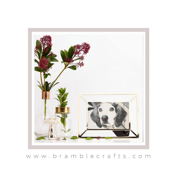 Layered paper cut software Bramble Craft