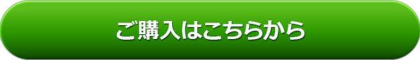 pc_orderbutton24_Meiryo.jpg