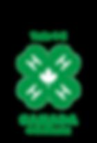 4H_logo_clr.png