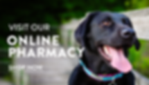 shop now button for online pharmacy
