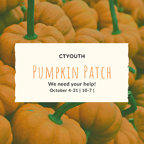 Pumpkin Patch.png
