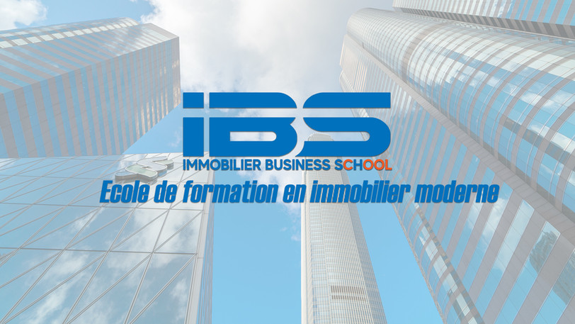 IBS formation daniel nadjar.jpg