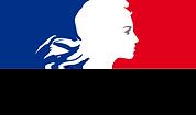 logo république francais daniel nadjar ibs formation CAPEACH.png