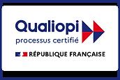 logo qualiopi-300dpi-avec-marianne-2 Daniel NADJAR CAPEACH IBS FORMATION.png