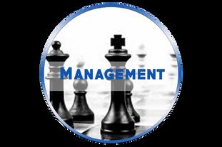 management_daniel_nadjar_catégorie.png