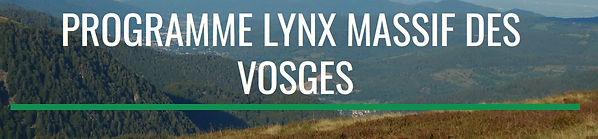 page accueil prog lynx 88 XF 10062019.JP