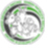 logo_vert_foncé_transparent_v2.png