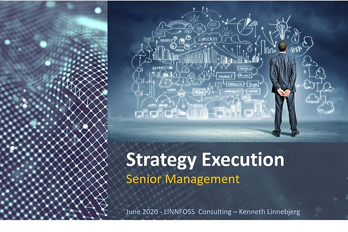 Program Managers Guide - Strategy Execution