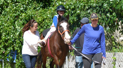 equinotherapy