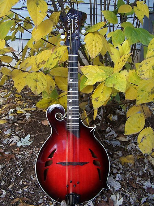 The Divine Comedy F-Model Mandolin