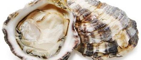 Kusshi Oyster (dozen) - Seattle January