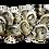 Thumbnail: Prime Kumamoto Oysters (dozen) - Federal Way