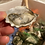 Thumbnail: The Oyster Gang