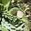 Thumbnail: Colar Quartzo Rosa + Hamsà