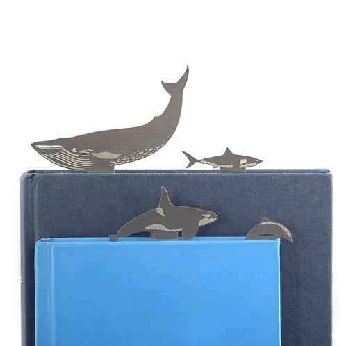 Marine Ocean bookmarks, Blue Whale, Orca, Shark, Dolphin