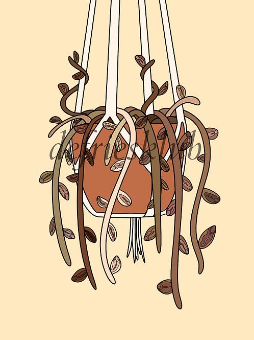 plantevulva #3