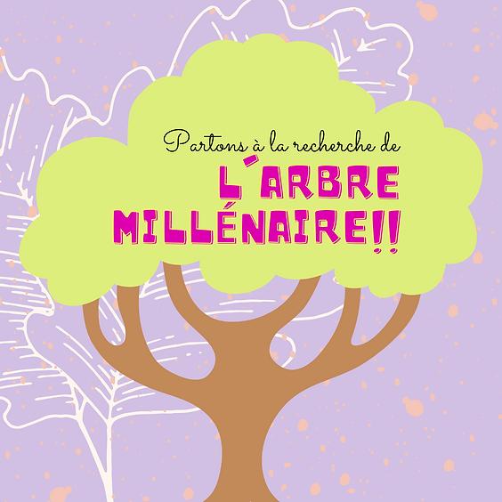 L'arbre millénaire d'Urdax (1)