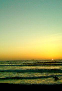 imperial beach sunset (surfer) 7