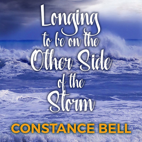 Longing to be on the Other Side of the Storm + My Perfect Will Bundle