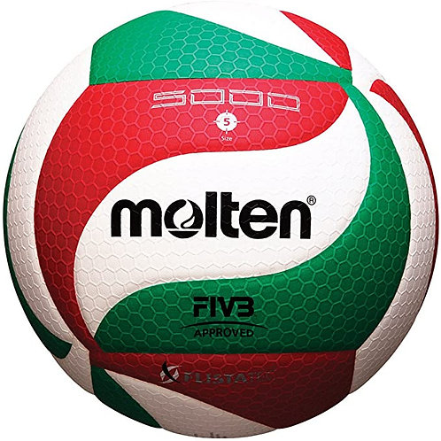 Molten official size volleyball